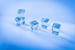 Cubos de hielo mojados Imágenes de archivo libres de regalías