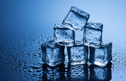 Cubos de hielo mojados en fondo azul Fotos de archivo libres de regalías
