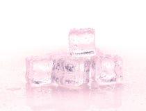 Cubos de hielo rojos en el fondo blanco Fotos de archivo libres de regalías