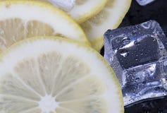 Cubos de hielo y rebanadas del limón Imagen de archivo libre de regalías