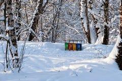 Cubos de la basura coloridos en un parque del invierno Fotos de archivo libres de regalías
