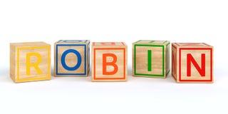 Cubos de madeira isolados do brinquedo com letras com pisco de peito vermelho do nome Imagens de Stock