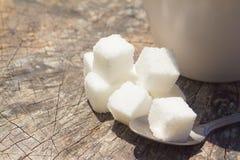 Cubos del azúcar del primer con la cuchara del té imagen de archivo