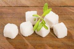 Cubos del azúcar y hojas de la planta del stevia - rebaudiana del Stevia dulcificante foto de archivo