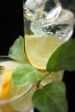 Cubos del limón y de hielo en agua de soda Imagen de archivo