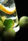 Cubos del limón y de hielo en agua de soda Foto de archivo libre de regalías
