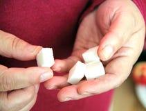Cubos do açúcar nas mãos Fotografia de Stock