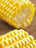 Cubos do milho Imagem de Stock Royalty Free