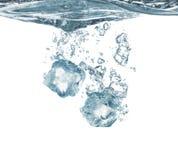 Cubos e água de gelo Imagem de Stock Royalty Free