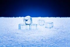 Cubos e neve molhados de gelo Fotografia de Stock