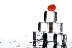 Cubos y cerezas de hielo Imagen de archivo libre de regalías