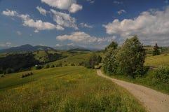 Cubra con grava el camino en las colinas verdes de Transilvania, Rumania Fotos de archivo