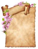 Cubra el papel viejo con la bandera rizada y la decoración floral stock de ilustración