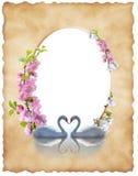 Cubra el papel viejo con la decoración y los cisnes florales imagen de archivo