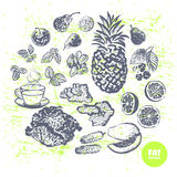 Cubra frutos e vegetarianos gordos tirados mão dos queimadores ilustração royalty free