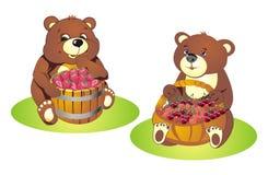 Cubs di orso con le bacche illustrazione di stock