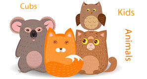 Cubs foxes, cats, koalas, owls Royalty Free Stock Images