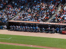 Cubs Players stand against the fence of the dugout Stock Photo