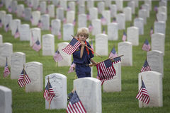 Cubscout安置之一85,在2014阵亡将士纪念日事件的000面美国旗子,洛杉矶国家公墓,加利福尼亚,美国 免版税库存图片