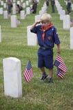 Cubscout saluterar, når han har förlagt en av 85, 000 USA-flaggor på den Memorial Day händelsen 2014, Los Angeles den nationella  Royaltyfri Bild