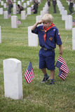 Cubscout salutes after placing one of 85, 000 US Flags at 2014 Memorial Day Event, Los Angeles National Cemetery, California, USA Royalty Free Stock Image