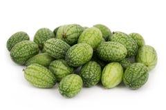 Cucamelon o mousemelon di scabra di Melothria aka immagini stock