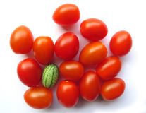 Cucamelon wśród czereśniowych pomidorów Fotografia Royalty Free