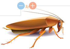 Cucaracha libre illustration