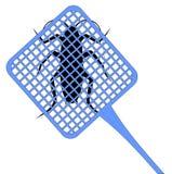 Cucaracha de la matanza Imagen de archivo libre de regalías