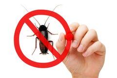 Cucaracha de la muestra de la prohibición Imágenes de archivo libres de regalías