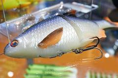 Cucaracha modelo plástica del cebo de pesca imágenes de archivo libres de regalías