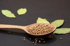 Cucchiai di legno con la vista superiore dei semi di lino e del pepe fotografie stock