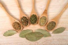 Cucchiai di legno con le erbe italiane popolari sulla tavola di legno Fotografie Stock Libere da Diritti