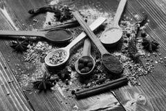 Cucchiai di legno con le palle del pepe, la paprica, il curry e le spezie asciutte Fotografia Stock