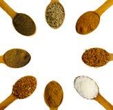 Cucchiai di legno con le spezie Immagini Stock Libere da Diritti