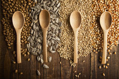 Cucchiai e grani di legno Immagini Stock