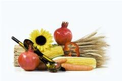 Cucchiai e verdure Immagini Stock