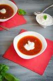 Cucchiaio bianco della panna acida del piatto del Borscht Fotografia Stock