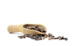 Cucchiaio con i chiodi di garofano Fotografia Stock