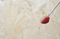 Cucchiaio con le uova rosse del cicloterro Fotografia Stock Libera da Diritti