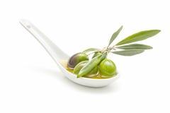 Cucchiaio dell'olio di oliva Fotografia Stock