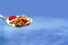 Cucchiaio di cereale Fotografie Stock Libere da Diritti