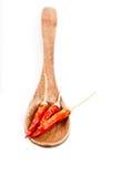 Cucchiaio di legno Fotografia Stock