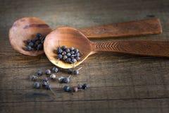 Cucchiaio di legno con la spezia Immagini Stock