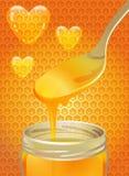 Cucchiaio di miele Fotografia Stock