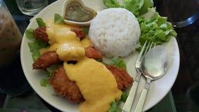 Cucchiaio fritto pollo del pranzo Fotografia Stock Libera da Diritti