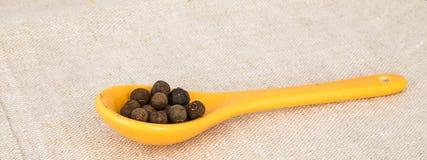 Cucchiaio giallo ceramico con quattro spezie Immagine Stock Libera da Diritti