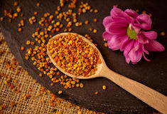 Cucchiaio in pieno del polline dell'ape del polline del granello Immagine Stock Libera da Diritti