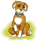 Cucciolo allegro Fotografia Stock