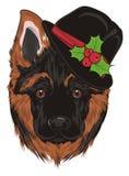 Cucciolo in black hat Fotografie Stock Libere da Diritti